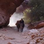 Cavalier sous rocher